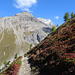 farbenfroher Herbst am Albula