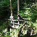 Im Belgenbachtal