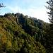 Hörnli Westwand