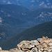 Gipfel-Streifenhörnchen geniesst die Aussicht :-)