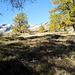 arriviamo all'alpe Sponda....con la poca neve sulle cime più alte il panorama è incantevole....