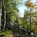16) Suedwaerts zum Col de Segalès<br />