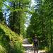 Start auf dem flachen breiten Weg ins Naturschutzgebiet