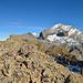 Gipfelkreuz Innere Fisistock und Doldenhorn