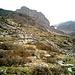 i pendii di Grussett verso la soprastante cima di Piancabella