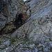 Aufstieg zum Nordeck vom Karjoch