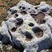 Vogelbäder auf der Steinigen Matte