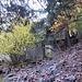 Die Ruine der alten Mine