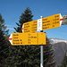 knapp drei Stunden nach dem Start in Camedo ist bei Pescia Lunga der Grat erreicht, der in westlicher Richtung mit einigem Auf und Ab zum Gipfel des Pizzo Ruscada führt