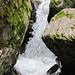 Wasserfällchen entlang der Aa.