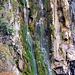 Ein urchiger Wasserfall, entlang des Aabaches.