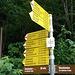Bei St. Martin gings hinauf zur Malanser Alp und weiter zum Heidelpass