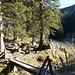 """Gegenüber am Baum das Schild (""""Ruchenköpfe Klettereinstieg"""") Von hier zur Ruchenkopfhütte weiter.<br /><br />Im o.e. Bericht aus Brombas Bergseiten war dies noch eine """"eingeländrige Brücke"""". Inzwischen ist wohl eine """"keingeländrige"""" Brücke aus ihr geworden....<br />"""