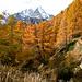 Traversée Alpe Ciamporino - Balma