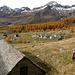 De retour à l'Alpe Veglia