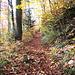 Der Wanderweg nach dem wir den Klushof hinter uns gelassen haben. Immer wieder stoßen wir auf Grenzsteine, die auf der einen Seite ein E zeigen.