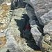 Qualche bel passaggio di roccia durante la discesa in cresta.