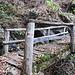 Über diese Brücke, die Balken noch morscher als im letzten Jahr, aber sie hält