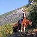 Auch die Pferde geniessen den schönen Herbsttag