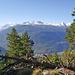 Ausblick aus dem Bergwald