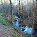 Ciclabile e torrente Margorabbia: una simbiosi