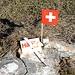 """<b>Un caro saluto a tutti gli amici di Hikr.org dal Pizzo di Nara.<br />""""...in ogni tempo, attraverso il vento, strada facendo, dall'Himalaya all'Oceano, io vado e imparo...""""<br />Chantal Mauduit, alpinista francese, nato a Parigi il 24.3.1964 – morto il 13.5.1998 sulle pendici del Dhaulagiri in Nepal. </b><br />"""