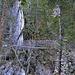 Wackelbrückeine vor der Binnaschlucht