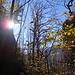 Erst um 11:00 Uhr geht die Sonne im Valle di Nibbio auf. Dadurch, dass das Tal in Nord-Süd-Richtung verläuft, gibt es auch im Winterhalbjahr etwas Sonne – allerdings nur für wenige Stunden.