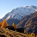 Alpage de Sengge et massif du Balfrin (vallée de Saas)