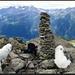 Gipfelglück auf Le Pipe.