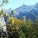 Querung von Cadinc nach Alpe Solögna (im Hintergrund: Cresta del Piatto, Rosso, Bocchetta di Sovénat)