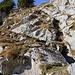 """Gleich beim Einstieg leitet ein gesicherter Steig über eine Felsstufe auf das Gipfelplateau. Die Stelle ist überaus gut abgesichert so dass sie sogar als """"T2-Bergwanderung"""" durchgehen würde."""