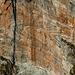 Detail Alnasca Südwand