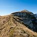 Gemütlich geht es über den Wiesenrücken dem ersten Gipfelsteinmann entgegen