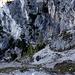 Der einfache, aber schmale Abstieg durch die Nordwand der Apostel