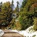 Herbstfarben und Schnee