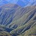 Undurchdringbare Bergwälder