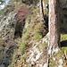 naturbrücke von oben