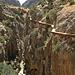 Kurz nach der nördlichen Brücke: der Beginn des Camino del Rey nach Süden.