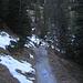 Die ersten Eisfleckerl am Schützensteig gab es heute erst beim Wasserfall. Vorher war der gesamte Steig aper.<br /><br />I primi pezzi di ghiaccio sullo Schützensteig oggi si incontrano solo alla cascata. In basso tutto il sentiero è stato privo di neve o di ghaiccio.