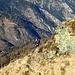Scendiamo prima sul lato Calanchino, a prendere un sentierino che si trova qualche decina di metri sotto la cima