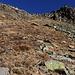 Die obersten paar dutzend Meter zum Bassa di Söu (2443m) waren ziemlich steil, wobei wir im obersten Teil auf deutiche Wegspuren trafen.