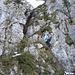 Lena hat die erste Leiter am Gipfelaufbau gleich hinter sich gebracht