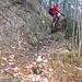 ... und hübschem Waldweglein