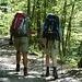 Tag 1: Im Wald bei Hammersbach. Hier ist mein Vater noch mit von der Partie.