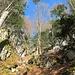 ... unter steilen Felswänden hindurch