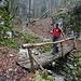 ... geht vor dem Forsthaus über dem etwas vorsichtig zu begehenden Brücklein über dem Chesselbach zu Ende