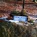 Utilissimi segnavia posizionati da [u Poncione],nei punti chiave,nel bosco che collega Ghirla a Boarezzo.