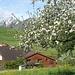 Bei schönstem Frühlingswetter start um 10 Uhr in Stein