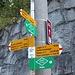 Bolla del Corno (1412 m): inizia il lungo giro
